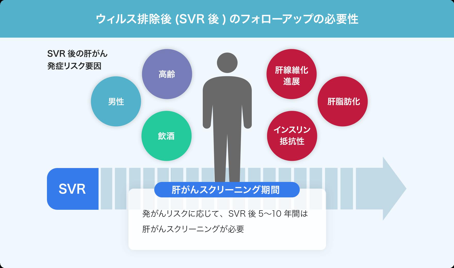 ウイルス排除後(SVR後)のフォローアップの必要性